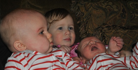 My babies. Amazing Grandchildren, from left, 2, 1 and 3.